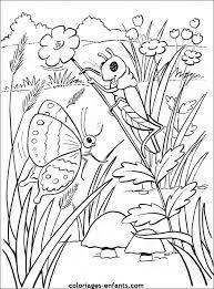 coloriage à dessiner à imprimer insectes