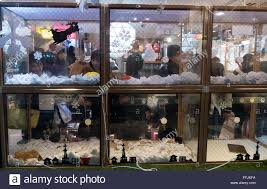Shop In Shop Interior Pet Shop In Tokyo Japan Asia Japanese People Shopping In Store