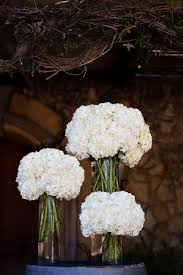 hydrangea centerpieces best 25 white hydrangea centerpieces ideas on