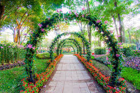 beautiful plants beautiful flower arches with walkway in ornamental plants garden