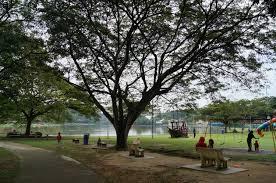 models show park microclimates improve city