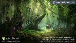 alien forest fsm team youtube