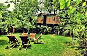 8 amazing tree houses to visit in india