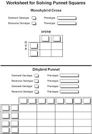 Dihybrid Cross Punnett Square Worksheet Index Of A P Ap 2 Northland Ap2lab Lab 1 Lab11 Images
