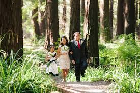 Berkeley Botanical Garden Wedding Intimate Berkeley Botanical Garden Wedding In The Redwoods