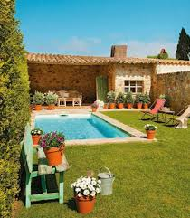 small swimming pool with potted plants maintenance tips for your