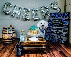 dog birthday photo shoot laura squire photography from me to