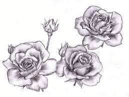 3 roses by szaitichz on deviantart
