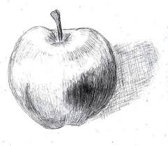 apple sketch by poeticperfectionist on deviantart