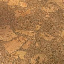 Globus Cork Reviews by Cork Floor Tiles Home Depot Cork Floors Pros And Cons Cork