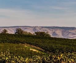 watermill winery merlot walla walla valley usa prices
