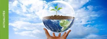 bureau d etude environnement ecotone bureau d études en environnement à toulouse midi