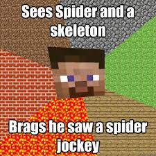 I Saw A Spider Meme - sees spider and a skeleton brags he saw a spider jockey