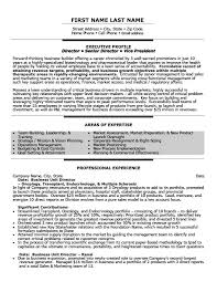 business resume exles business unit director resume template premium resume sles