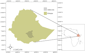 Map Of Ethiopia Land Free Full Text Land Use And Land Cover Change In The Bale