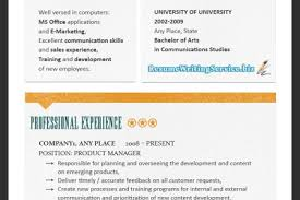 professional resume format for experienced accountantsworld best resume rewrite