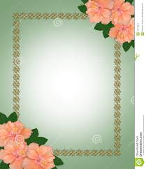 wedding invitation border hibiscus stock image image 13914041