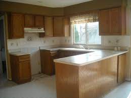 Refinish Kitchen Cabinets Without Stripping Flat Kitchen Cabinet Doors Makeover Cabinet Makeover Kit Adding