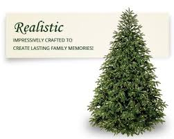 best 25 fraser fir ideas on tree