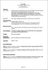 Student Resume Format Resume Format For Computer Science Students Resume For Your Job
