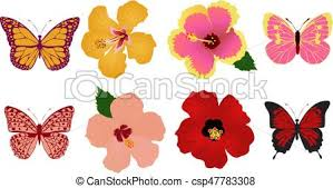 vector clipart of hibiscus flower butterfly vector flowers and
