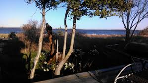 pet friendly oceanfront summer rental in point lookout ny point