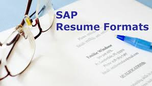 SAP Sample Resume for Freshers  Experienced   Functional     STechies