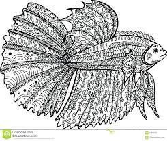 fish coloring pages pictures betta sheets betta fish coloring