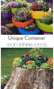 Ideas For Container Gardens 10 Container Gardening Ideas Bless My Weeds