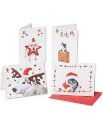 spectacular deal on american greetings 5567790 boxed