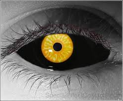 33 best contacts images on pinterest colored contacts halloween