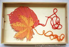 montessori tree printable free leaf printables and montessori inspired fall leaf activities