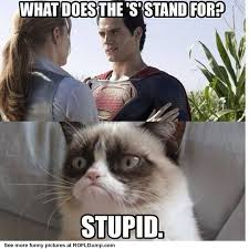 what does s stand for fail funny meme lol cat w o r d s