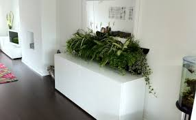 wall mounted planters plant stunning hanging wall planters indoor vertical garden