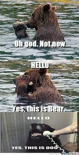 How About Yes Meme - rmx yes this is bear by joker22 meme center