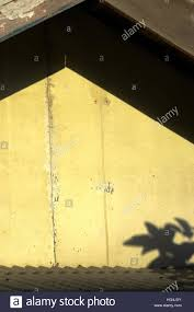 roof structure of a residential house with shadows of tree leaves