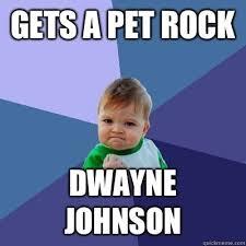 Dwayne Johnson Car Meme - pet rock meme 100 images fresh 22 pet rock meme wallpaper site