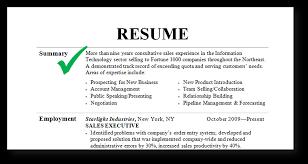 executive summary resume example summary on a resume example template resume example capabilities summary administrative assistant