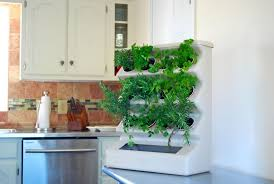 indoor kitchen garden ideas lovable kitchen garden indoor image of indoor vegetable garden