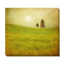 field trees oversized gallery wrapped canvas overstock