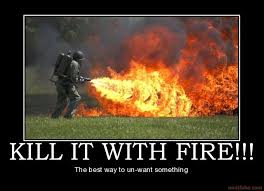 Fire Meme - image 128623 kill it with fire know your meme