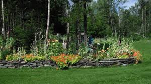 spirit bear gardens for sale follow the white kermode spirit