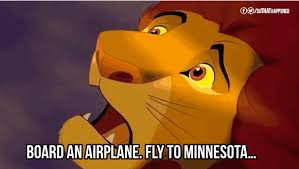 Lion King Memes - the lion king gif find share on giphy