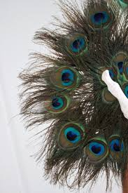 peacock feather fan vintage tri peacock feather fan feng sway