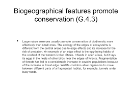 biodiversity and hawaii ppt video online download