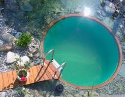 Backyard Swimming Ponds by 248 Best Swimming Pond Images On Pinterest Natural Swimming
