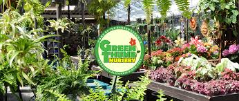 Green Thumb Landscaping by Green Thumb Nursery Canoga Park Green Thumb Nursery