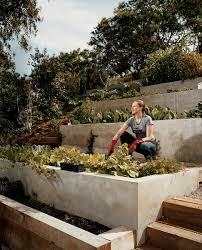 Landscaping Ideas For A Sloped Backyard by Modern Terraced Vegetable Garden Great Use For A Steep Slope