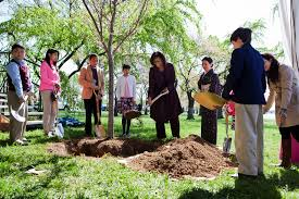 National Cherry Blossom Festival by First Lady Michelle Obama Marks The Cherry Blossom Festival