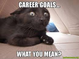 Career Meme - career goals what you mean make a meme